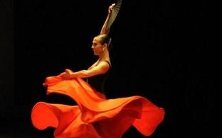 'Aida Gómez', un recorrido por su trayectoria profesional