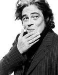 Benicio Del Toro ficha por 'Inherent Vice', Sophia Myles por 'Transformers 4'