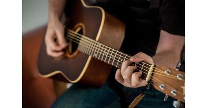 Se precisa cantante-guitarrista en Málaga