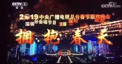 Video CCTV 2019